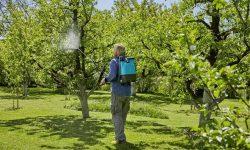 Melyik a legjobb háti permetező? TOP 7 választás a kerti munkákhoz
