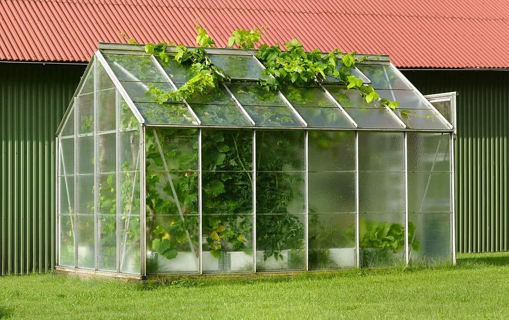 legjobb kerti üvegház